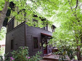 Beautiful Black Mountain House rental with Deck - Black Mountain vacation rentals
