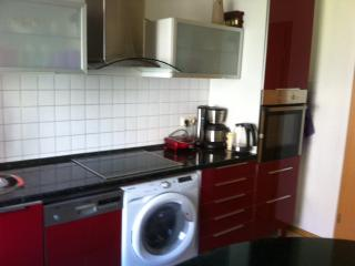 Nice 3 bedroom Condo in Dresden - Dresden vacation rentals