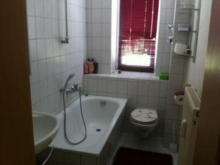 Bright 3 bedroom Dresden Condo with Long Term Rentals Allowed - Dresden vacation rentals