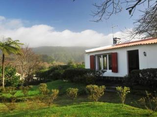 House in Sao Miguel, Azores 103122 - Furnas vacation rentals