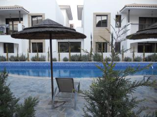 Cozy 2 bedroom Tersefanou Apartment with Internet Access - Tersefanou vacation rentals
