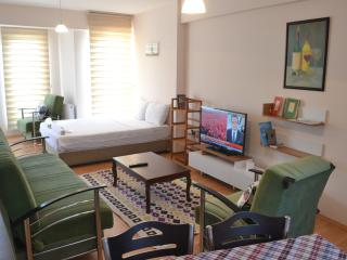Tavukcu Ahmet Bright Clean Studio Apartment - Denizli vacation rentals