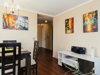 Comfortable entire apartment 2 bedrooms downtown - Santiago vacation rentals