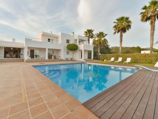 Spacious Villa with Internet Access and A/C - Nuestra Senora de Jesus vacation rentals