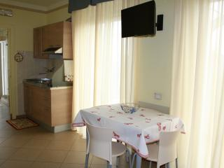 Anchise apartment for five guests - 1 - Alba Adriatica vacation rentals
