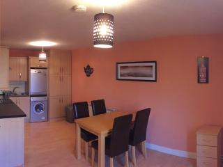 Nice 2 bedroom Apartment in Westport - Westport vacation rentals