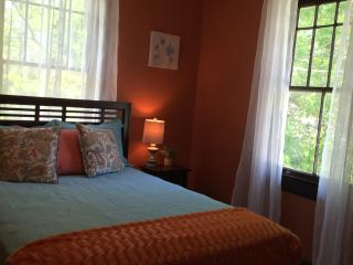 Brand New Historic Renovation Uptown - 2 Bedroom! - New Orleans vacation rentals