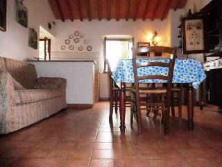 Beautiful 2 bedroom House in Montescudaio - Montescudaio vacation rentals