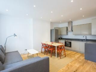 Luxury 1 bed in Paddington - London vacation rentals