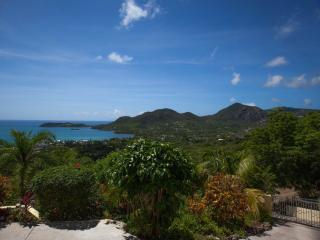 Comfortable Villa with Internet Access and Dishwasher - Saint Paul Parish vacation rentals
