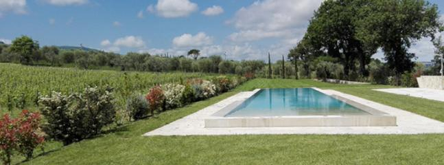 huge swimming pool - travertino - Sarteano - rentals