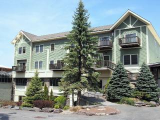 Pinnacle Condominium Hunter Mtn, closest to lifts - Windham vacation rentals