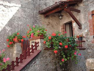 Nice 3 bedroom House in Colognora - Colognora vacation rentals