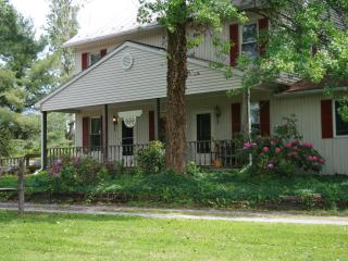 Beautiful Condo with DVD Player and Housekeeping Included - Lewisburg vacation rentals