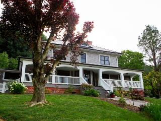 5 bedroom House with Internet Access in Fletcher - Fletcher vacation rentals