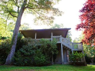 Gorgeous 4 bedroom House in Swannanoa - Swannanoa vacation rentals
