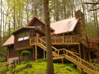 Gorgeous 4 bedroom House in Saluda - Saluda vacation rentals