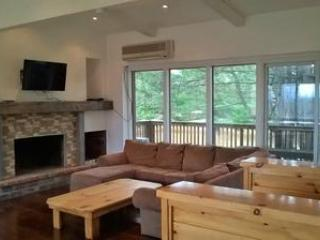 6 Bed Blue Mountain Rental with Hot tub 8C - Craigleith vacation rentals