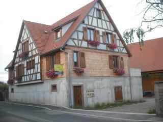 Gîtes Centre Alsace au pied du Haut Koenigsbourg - Kintzheim vacation rentals