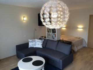 Fully furnished, one bedroom flat, with patio - Palanga vacation rentals