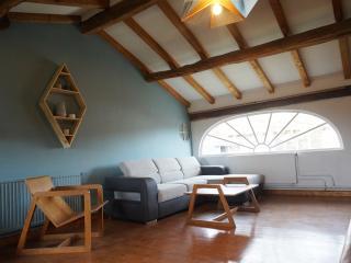 la demeure aux étoiles maison 12 personnes euro 16 - Panissieres vacation rentals