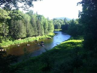 Evergreen Lodge on Cedar River - Indian Lake vacation rentals