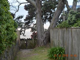 3 bedroom House with Ceiling Fans in Takapuna - Takapuna vacation rentals