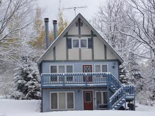 Nice Chalet with Internet Access and Wireless Internet - Bessemer vacation rentals