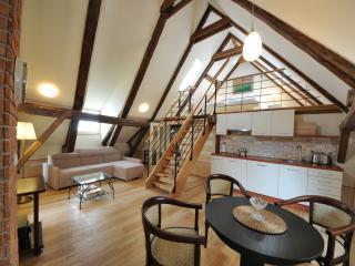 Apartments Latrán 43 - Apartment A1 - Cesky Krumlov vacation rentals