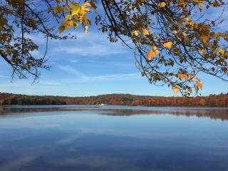Perfect Cottage with Toaster and Long Term Rentals Allowed (over 1 Month) - Beach Lake vacation rentals