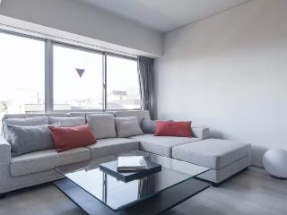 Modern Apartment in Sanjo district - Kyoto vacation rentals