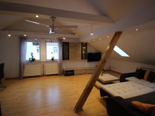 Nice Condo with Internet Access and Wireless Internet - Wertheim vacation rentals