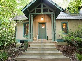 Perfect 3 bedroom Black Mountain Cabin with Deck - Black Mountain vacation rentals