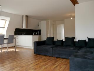 AIRSTAY – Exclusive Apartment BASEL - Allschwil vacation rentals