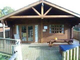 Pine Log Cabin - Swanage vacation rentals