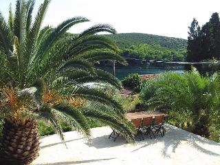 Apartments Mia-Molat - Ap5 - Molat Island vacation rentals