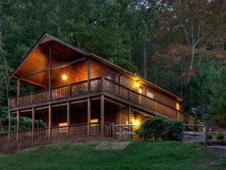 Appalachian Escape - Great Mountain Home - Blue Ridge vacation rentals