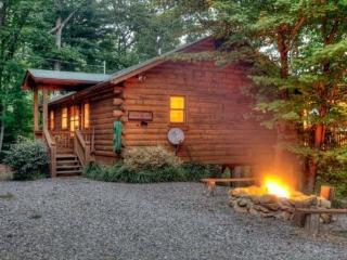Little Bear Paw - Ellijay vacation rentals