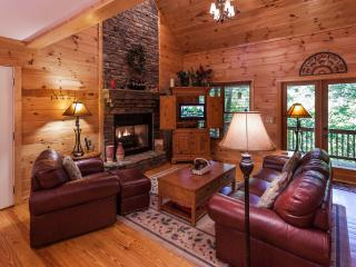 Beautiful Cabin with Deck and Internet Access - Ellijay vacation rentals
