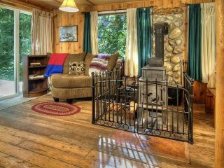 Adorable and Cozy Cabin - Great Mountain Activities Awaits - Baring vacation rentals