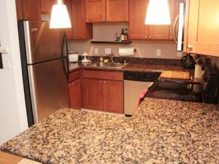 1 bedroom Apartment with Internet Access in Seattle - Seattle vacation rentals