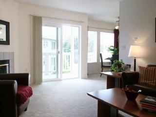 Bright and Sunny 1 Bedroom Apartment - University Place vacation rentals