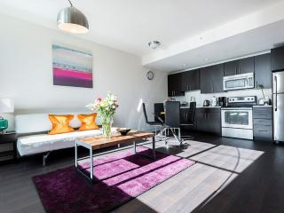 Warm and Delightful 1 Bedroom 1 Bathroom Apartment in Jersey City - Jersey City vacation rentals