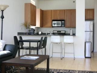 South Loop/McCormick 1br; Downtown - Chicago vacation rentals