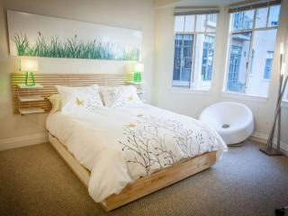 Furnished Studio Apartment at Forest Ave & Gilman St Palo Alto - Palo Alto vacation rentals