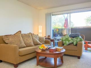 Comfy 1BR Silicon Valley Escape for business - Sunnyvale vacation rentals
