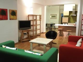 Ficus Tree Apartment WiFi, AC, near city center - Nicosia vacation rentals