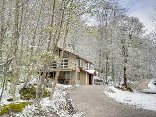 Gorgeous cabin with mountain views, near gondola & nature - walk to ski slopes! - Killington vacation rentals