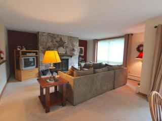 Ski-in/out retreat w/ shared hot tub, pool, sauna & game room! Golf nearby! - Dover vacation rentals