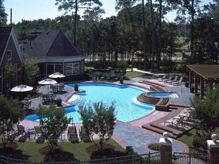 Furnished 3-Bedroom Apartment at Cypresswood Dr & Napoli Dr Houston - Deco vacation rentals